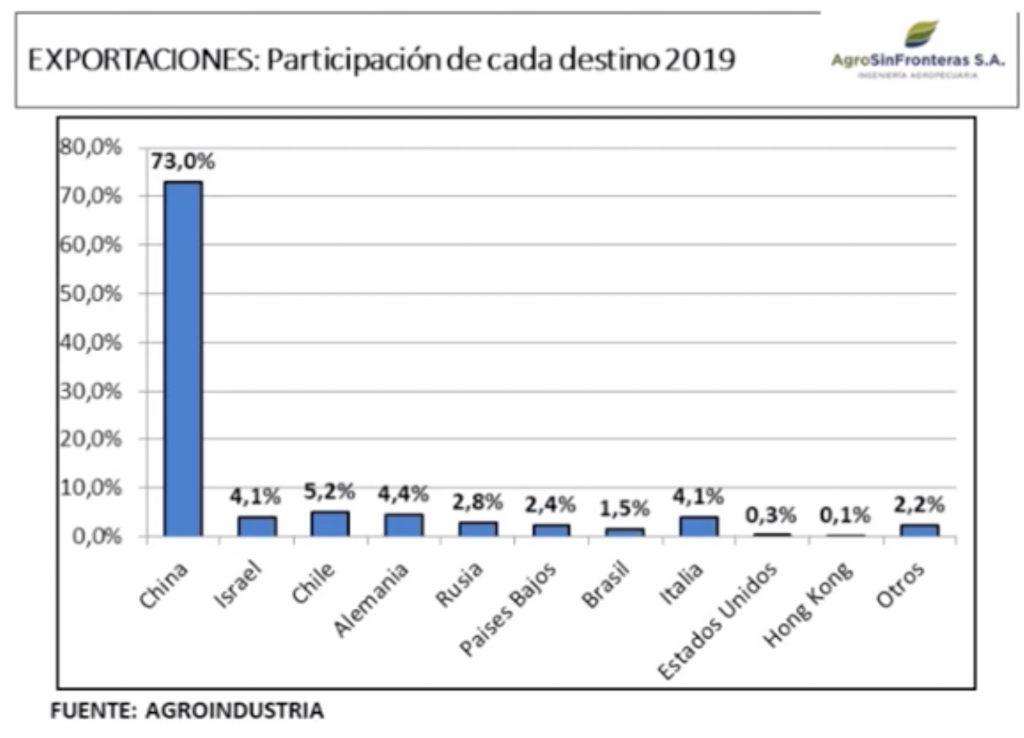 exportacion de carne argentina por pais de destino 2019